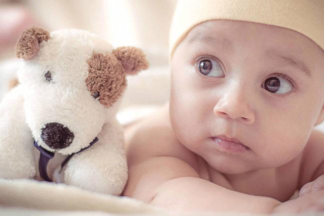 doudou-baby-creche